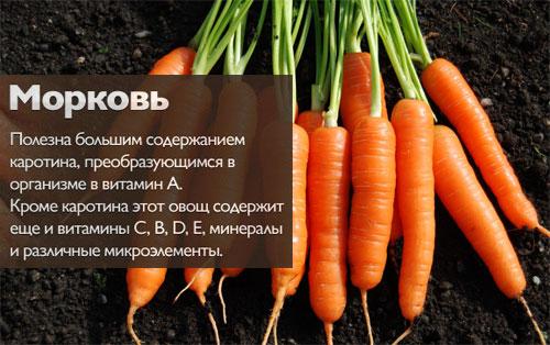 morcovi bruti pentru slabire pierdere în greutate corvetă c2